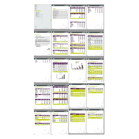 Business Plan chiffré du projet illadi / C&C2B
