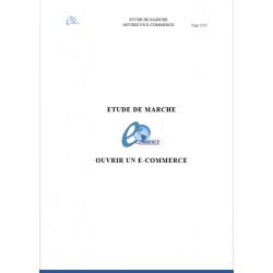 Etude de marché e-commerce (Word)